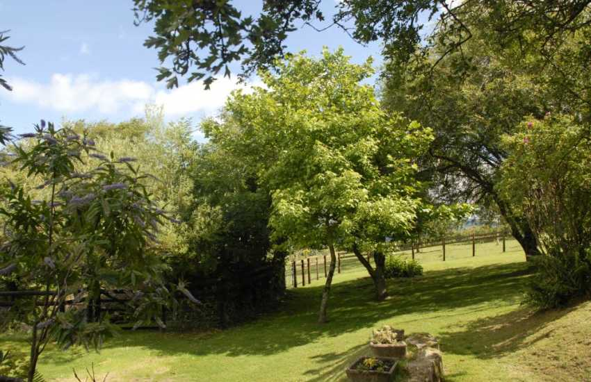 Coastal cottage Pembrokeshire with wild private garden - pets welcome