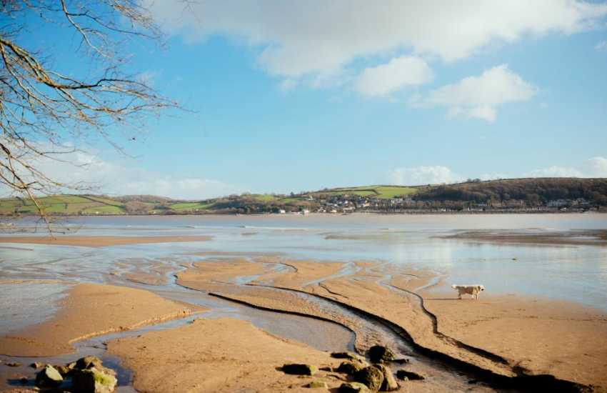 Llansteffan beach is Wales' best kept secret, only known to locals watch sunset over the castle above the River Tywi