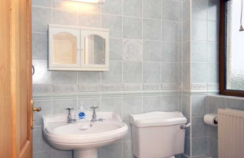 Teifi Valley family holiday home - master en-suite shower