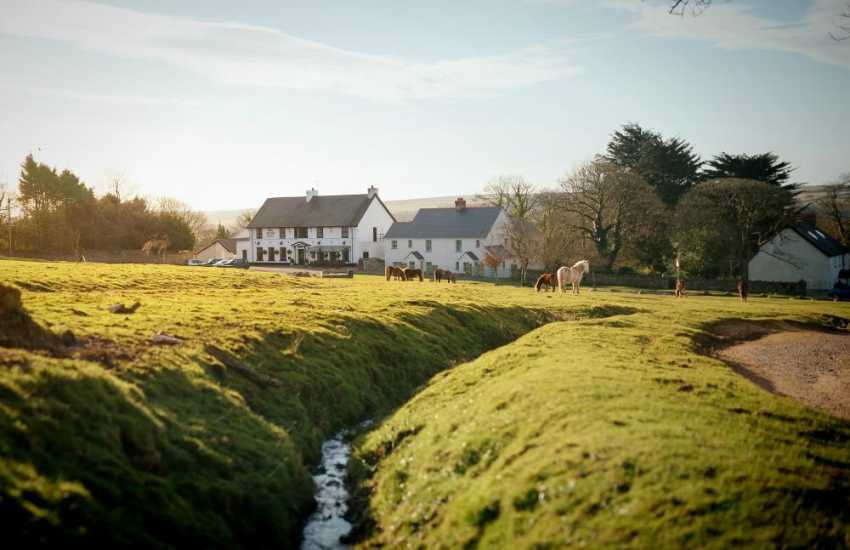 Set at the heart of The Gower Peninsula, Britain's first AONB, The King Arthur Hotel in Reynoldston is a magnificent location for great local food and ales