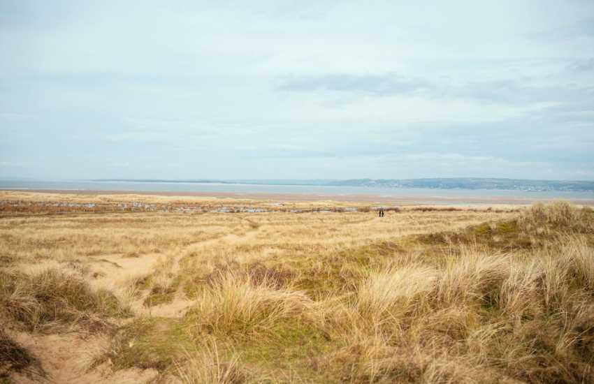 Whiteford Burrows is one of the many National Nature Reserves on the Gower