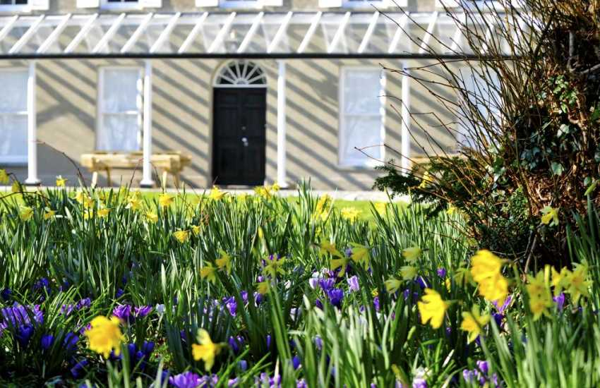 Criccieth holiday house - garden