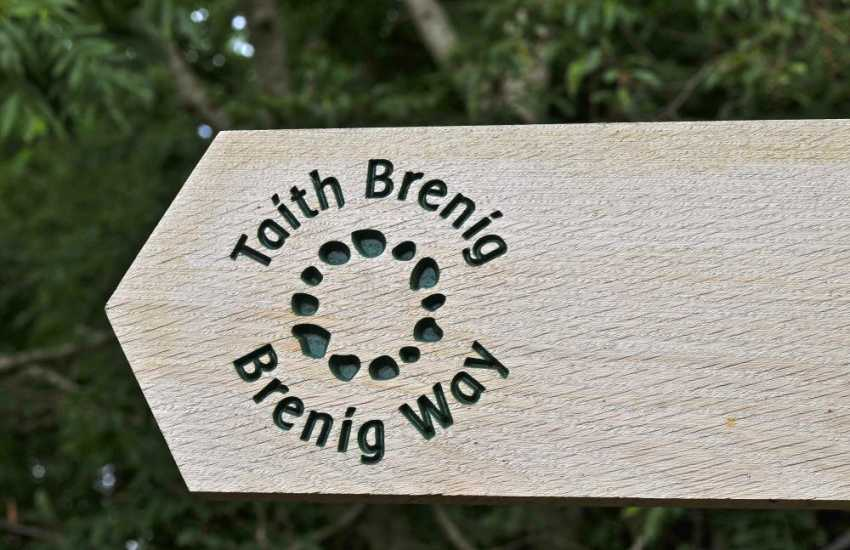 Walk the Brenig Way footpath near Corwen