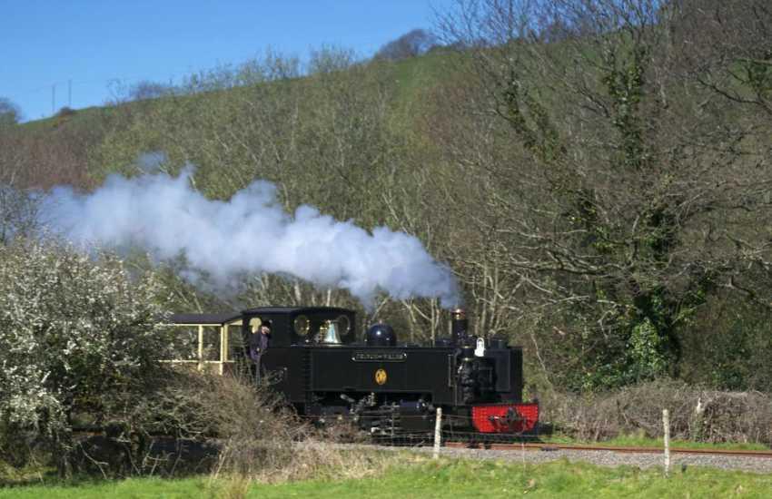Vale of Rheidol steam train passing at Llanbadarn Fawr