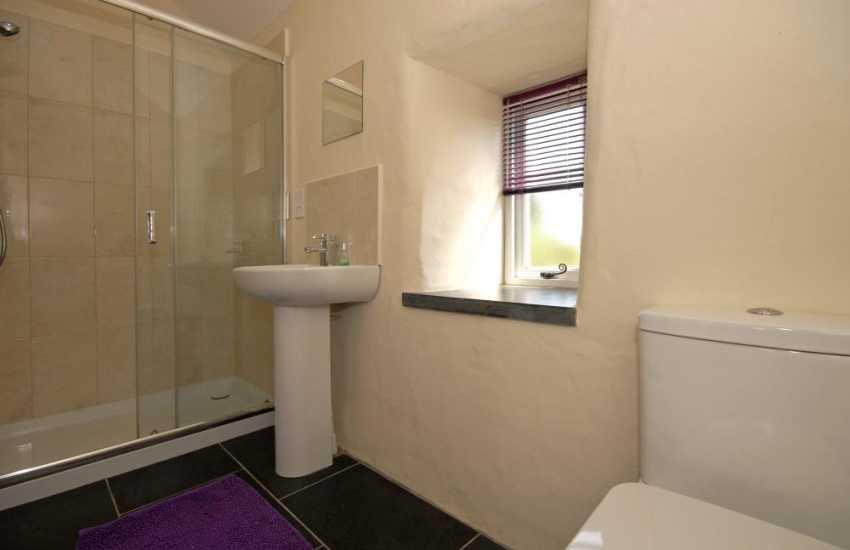 St Davids holiday cottage - Luxury en suite double shower