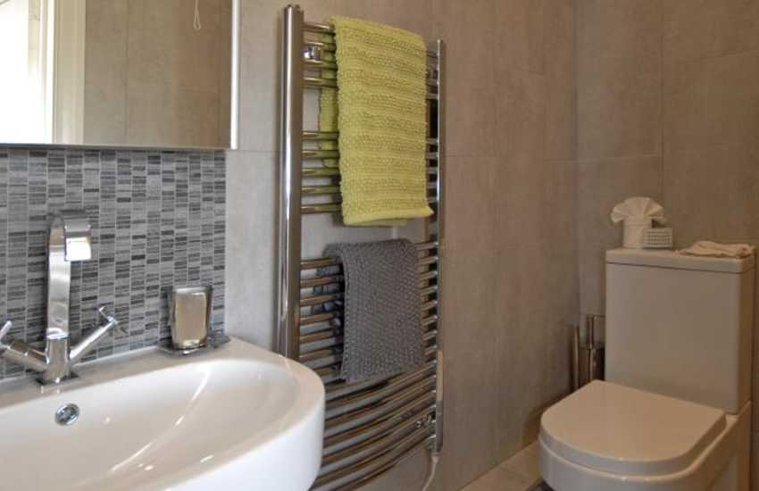 Llansteffan holiday farmhouse - master en-suite shower