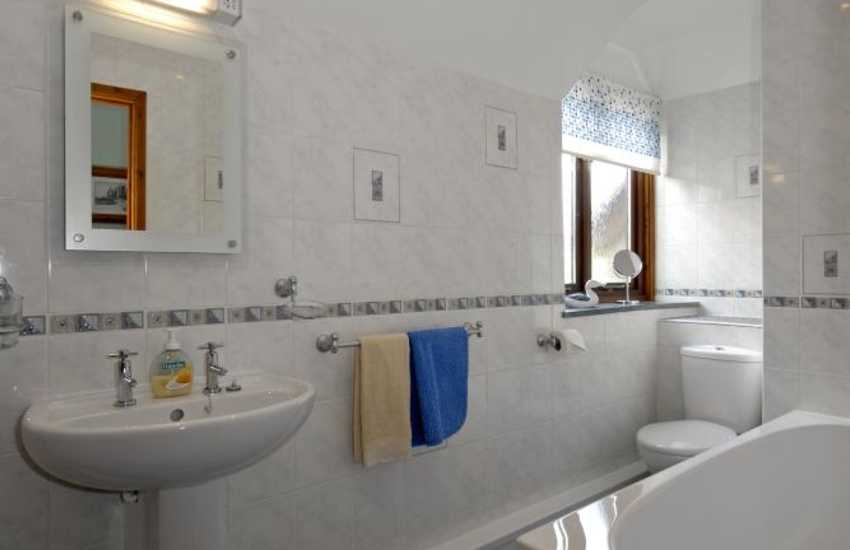 Holiday home in Carmarthenshire - family bathroom with hand held shower