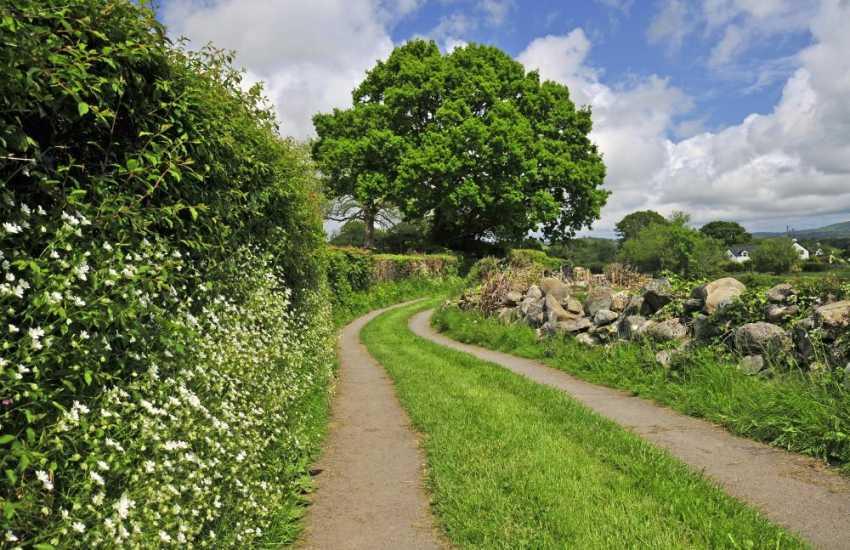 Beautiful walks in Llanbedr y Cennin