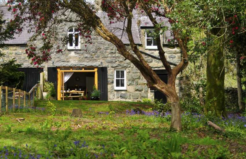 Pet friendly holiday cottage - ext