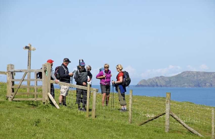 Walk the Pembrokeshire Coast Path for stunning cliff top scenery filled with flora and fauna during the summer months
