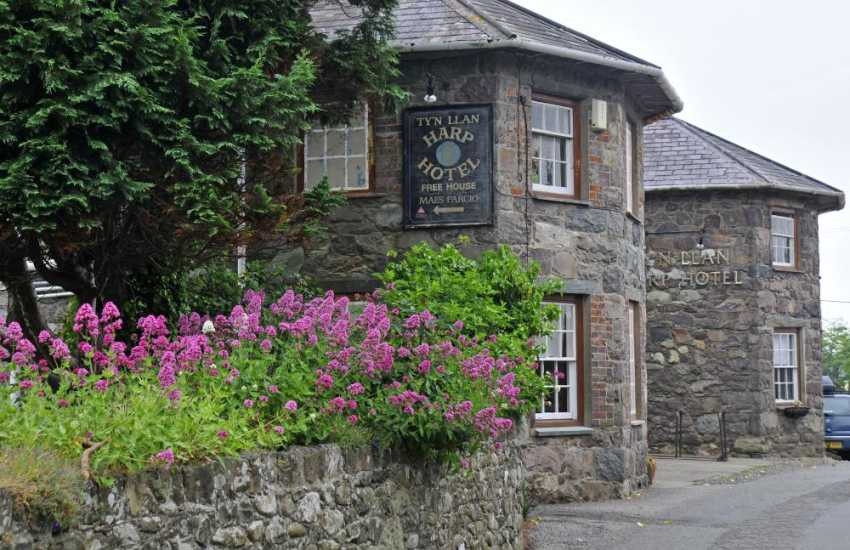 The Harp in Llandwrog, serving good food and ales