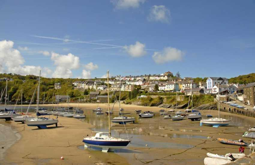 New Quay - a popular harbour village with 3 golden sandy beaches (Blue Flag) to choose from - Dolau and the picturesque Harbour Beach