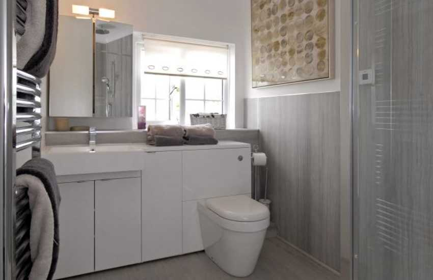 Llanybri holiday farmhouse - family shower room with double walk in shower