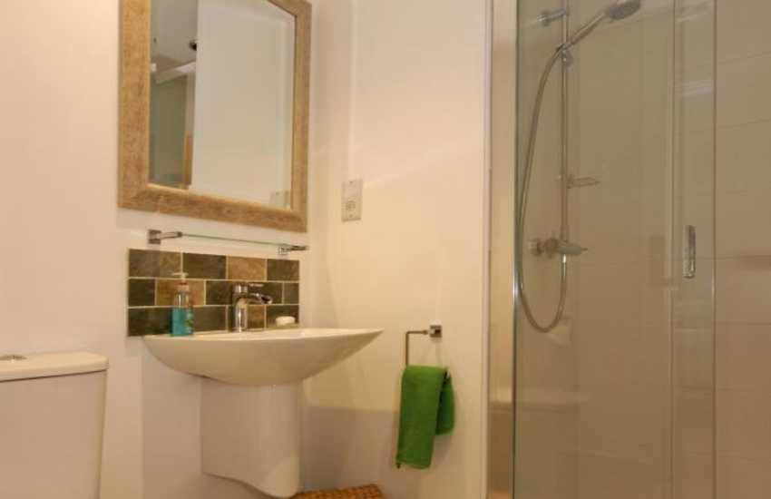 St Davids holiday house - ground floor master en-suite shower