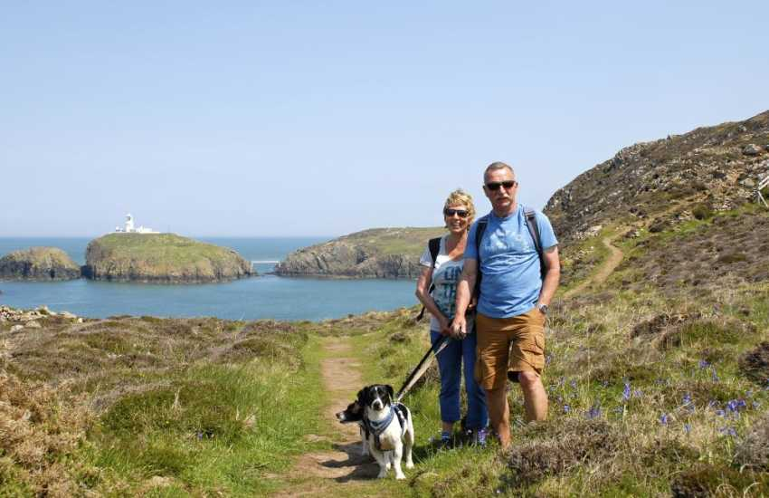 Walking at Strumble Head - most Quality Cottages welcome dogs