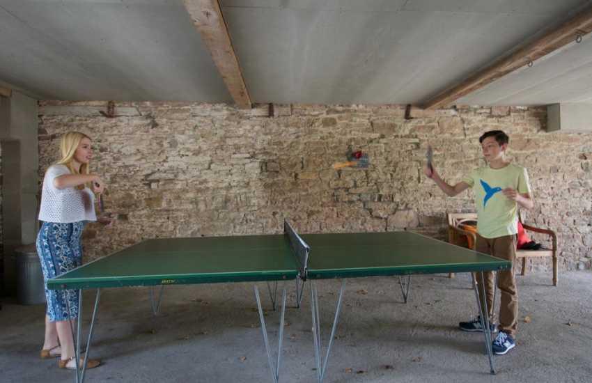 Pet friendly cottage Wales - table tennis