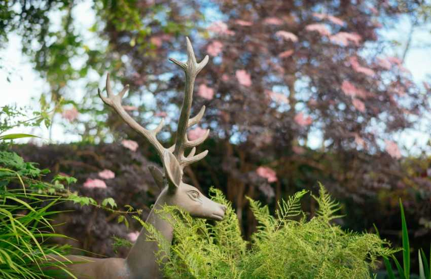 Walk around the award winning grounds of The Bakehouse cottage