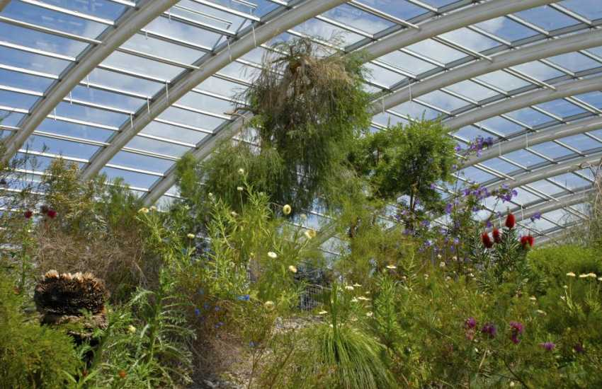 Historic Aberglasney Garden and the National Botanic Garden of Wales with its impressive Great Glass House, lakes, shops and cafe are well worth visiting