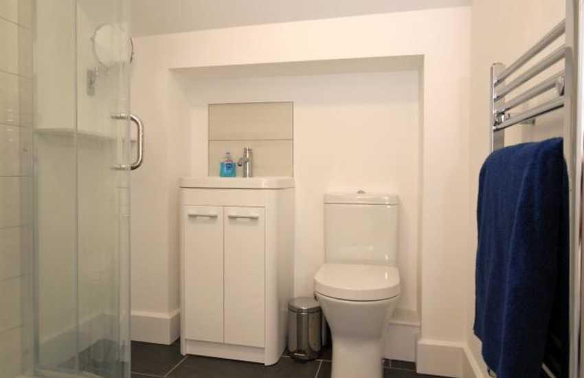 Newport holiday home - master en-suite shower