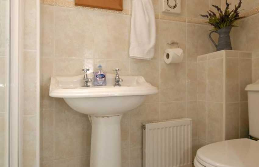 St Davids holiday cottage - master en-suite shower