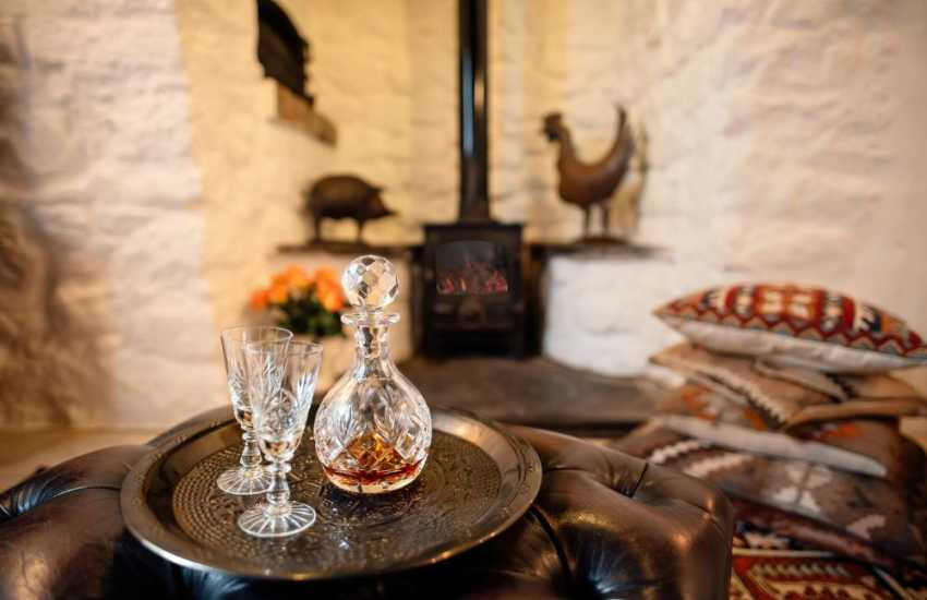 Llanmadoc cottage holiday for two and dog - lounge