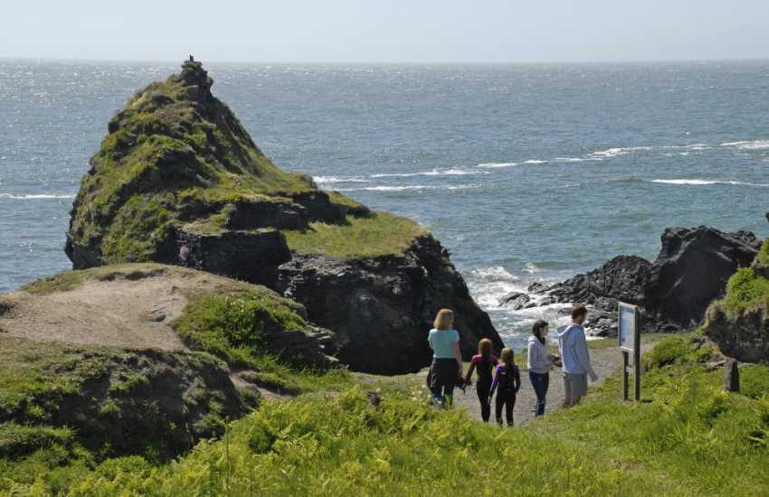 Walking on the Pembrokeshire Coast Path - stunning cliff top scenery, flora and fauna throughout the year