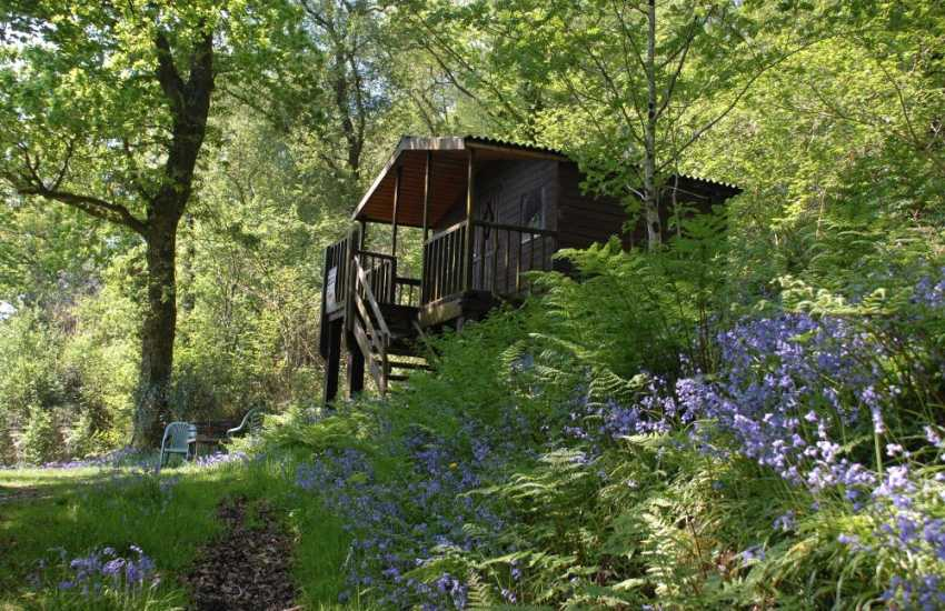 Log cabin for picnics and camp fire at Charlotte's Barn
