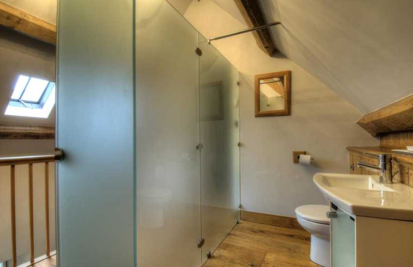 Luxury holiday house Brecon Beacons - toliet