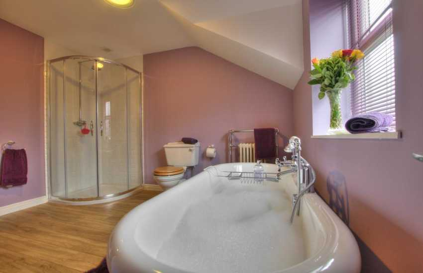 Snowdonia mountain holiday cottage - bathroom