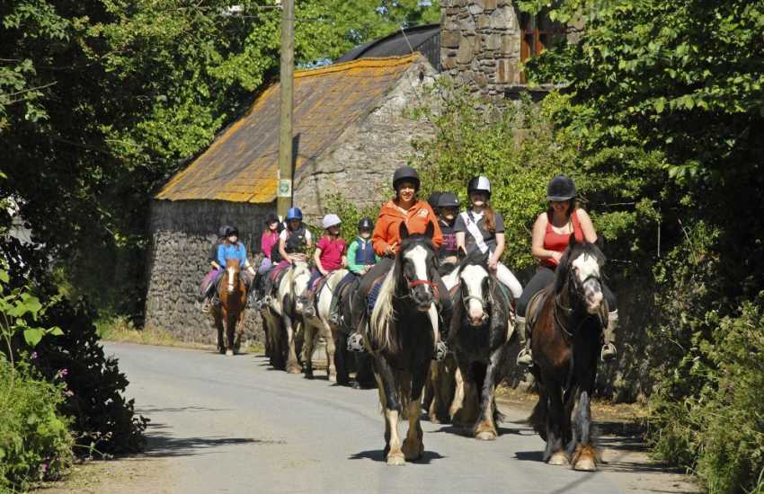 Llanwnda Riding Stables, Goodwick - enjoy pony trekking in the National Park along bridleways and quiet country lanes