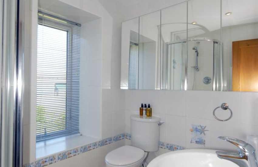 Strumble Head Pembrokeshire apartment - 1st floor shower room