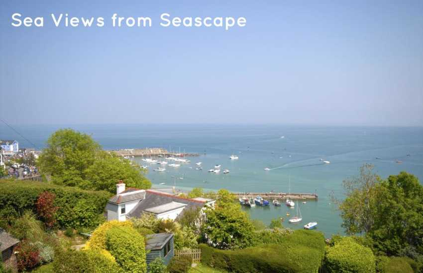 Stunning coastal views over New Quay harbour and Cardigan Bay
