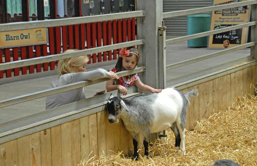 Oakwood, Heatherton, Picton Castle and Folly Farm Adventure Park are all great family days out