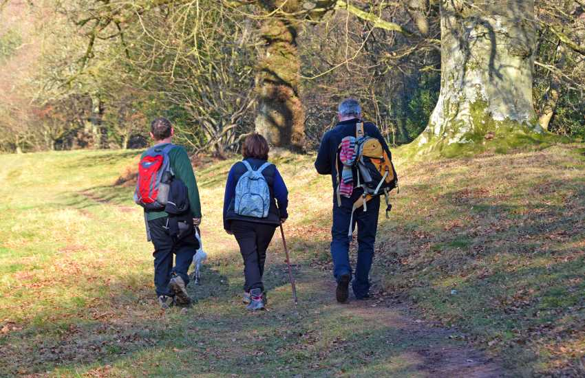 Walking in The Black Mountains, there are dozens of trails for every ability