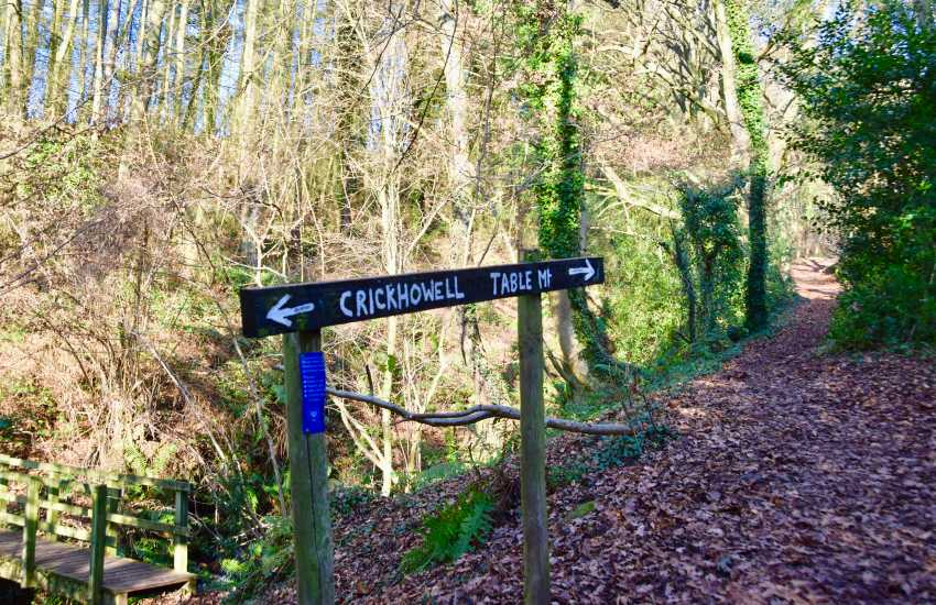 Walk the Brecon Way to Table Mountain