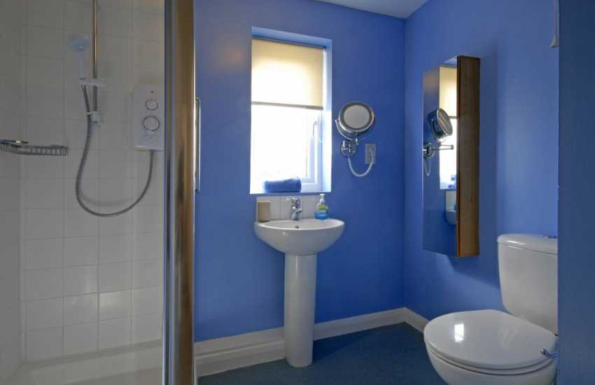 St Davids holiday home - double walk-in  shower