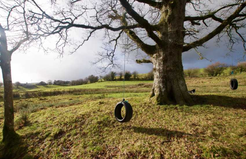 Luxury holiday cottage Snowdonia - field