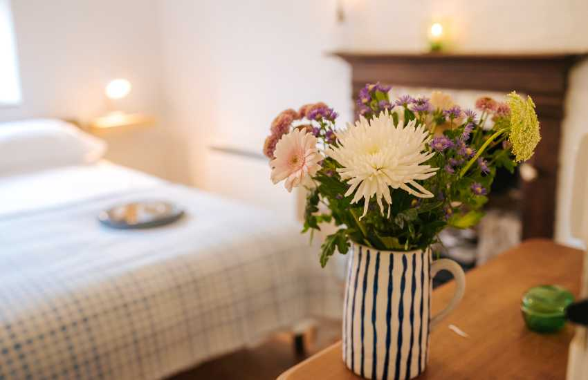 Nr Myddfai cottage holiday - flowers