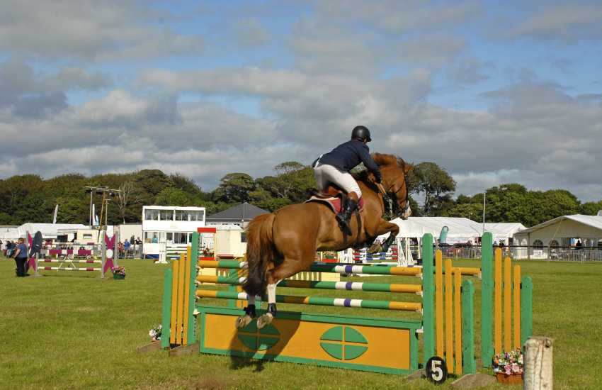 Pack a picnic and spend the day enjoying the atmosphere at a local agricultural show