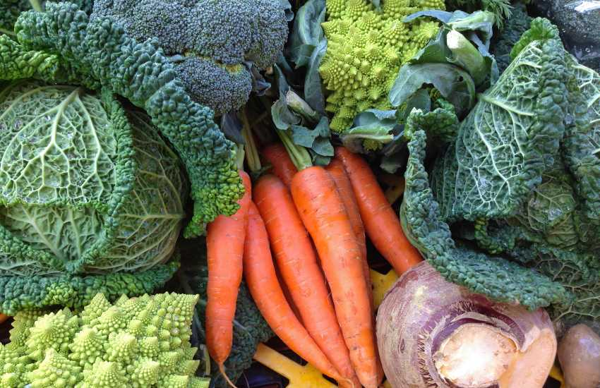 Fishguards weekly Farmers Market takes place in the Town Hall every Saturday - lovely, fresh local produce for sale