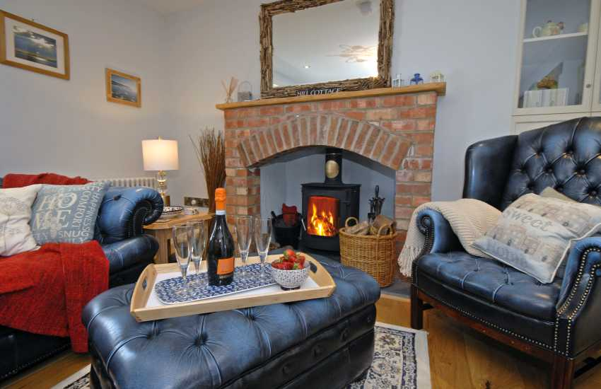 Hill Cottage Pembrokeshire with log burning stove