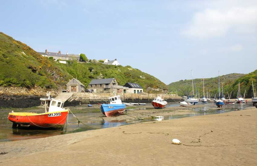 Gwdan Cove is reached by a walk along the Solva River at low tide