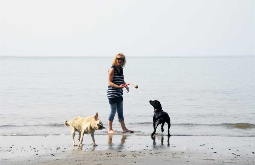 Most Quality Cottages are dog friendly. Enjoying the beach!