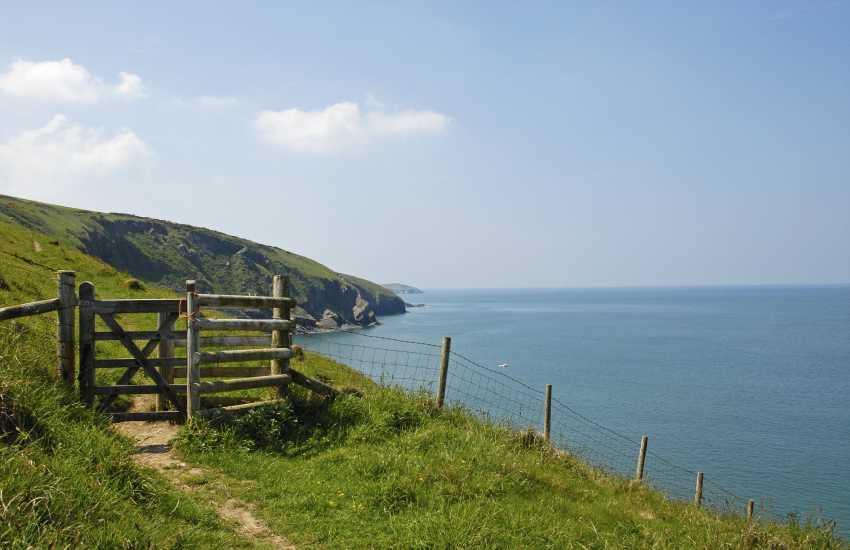 Out on The Cardigan Bay Heritage Coast Path - breath taking cliff top scenery, flora and fauna