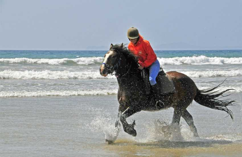 Marros Riding Stables cater for all levels of experience - gallop through the waves on a beach ride