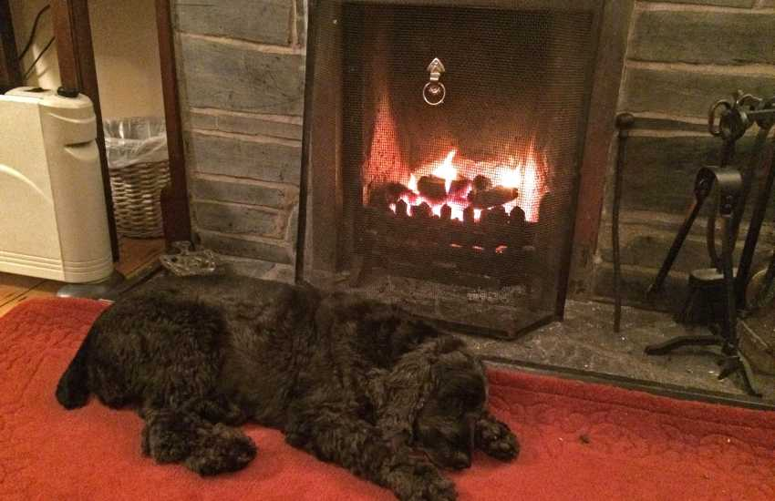 Pembrokeshire holiday cottage resting by the fire