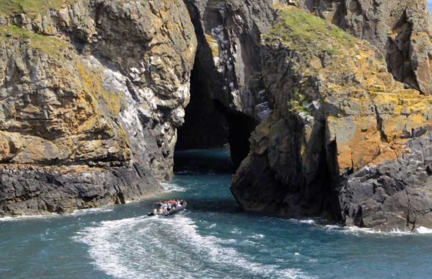 Enjoy an exhilarating boat trip out to explore the spectacular cliffs and sea caves of Ramsey Island