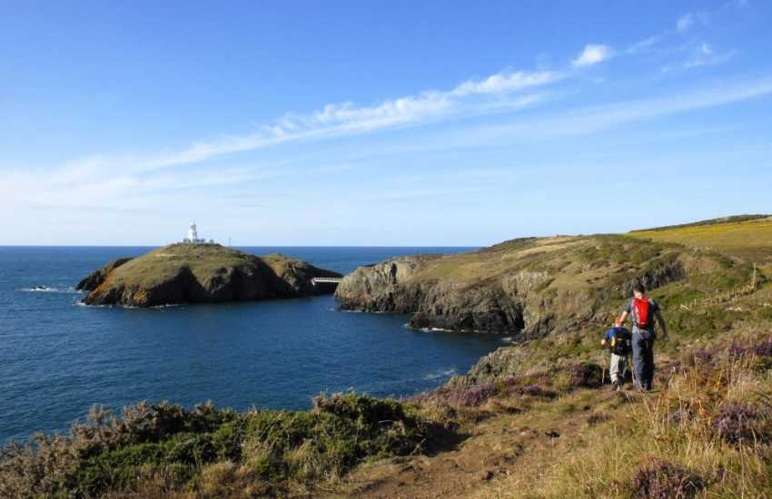 The Pembrokeshire Coast Path at nearby Strumble Head - fabulous scenery and cliff top walking