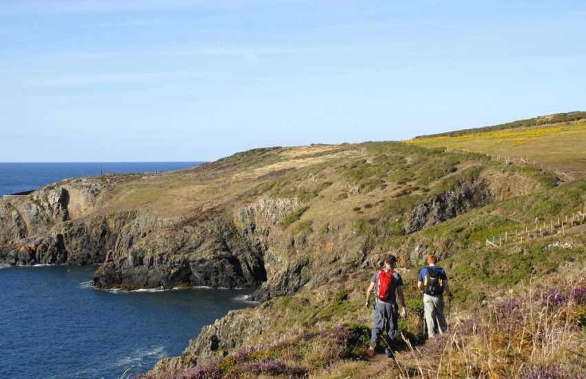 Enjoy magnificent cliff-top walks and coves around Cardigan Bay Marine Heritage Coast