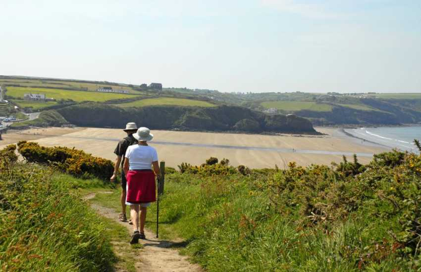 Explore Pembrokeshire's flower decked cliffs along the coastal footpath in either direction from the beach